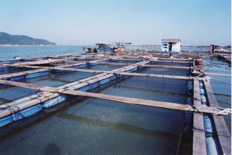 水产养殖设备的用途