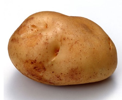 土豆种植技巧