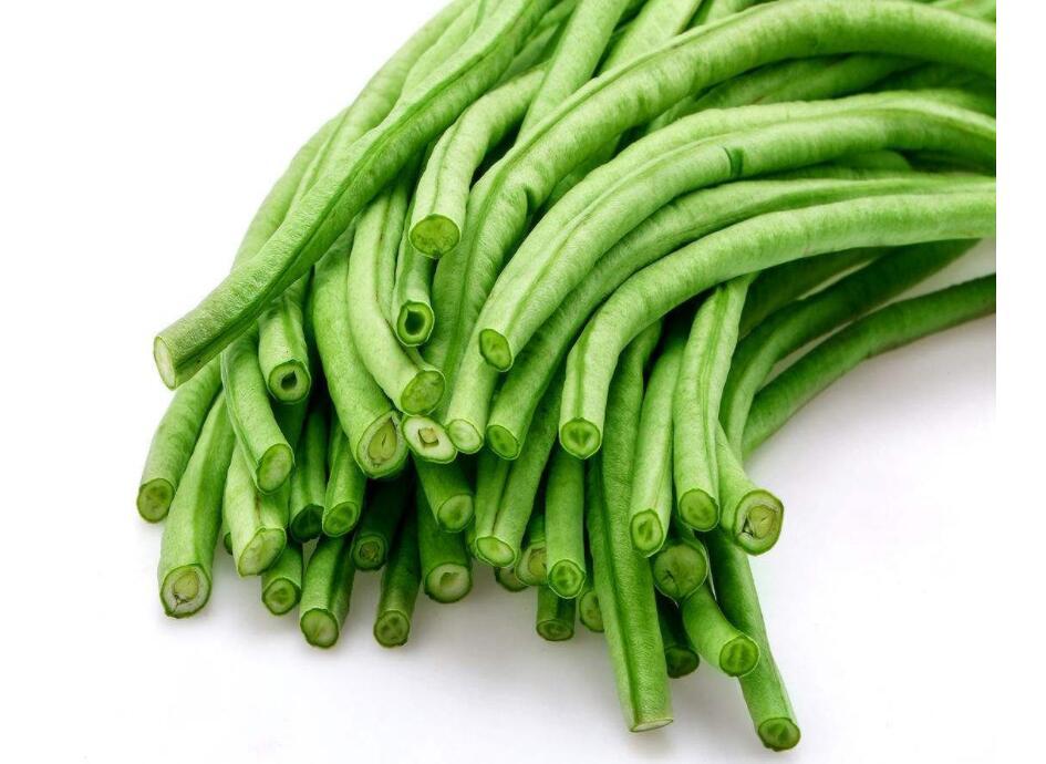 秋季豇豆病虫害的防治办法