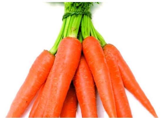 胡萝卜的田间杂草怎么样除
