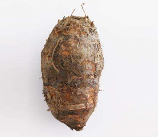 大芋头的高产方法