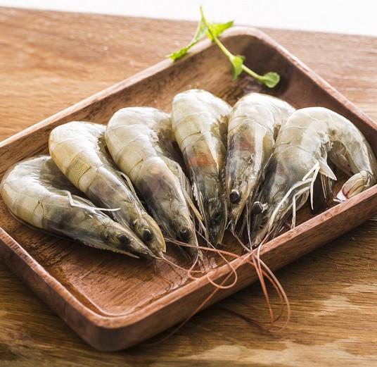 南美白对虾生活习性