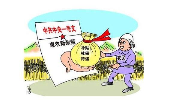 农村新增三类补贴有哪些